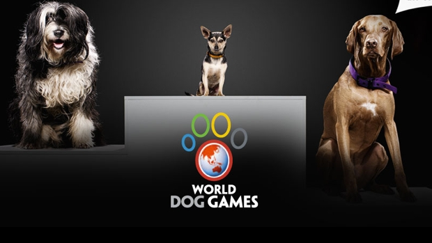 World Dog Games_620