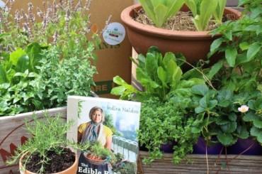 Urban Gardenista in a box