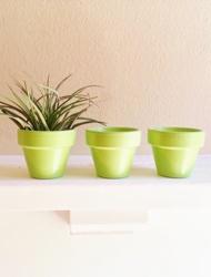 Apple Green Planter Pots