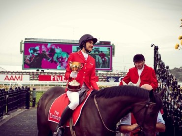 Melbourne Cup Guide 2013