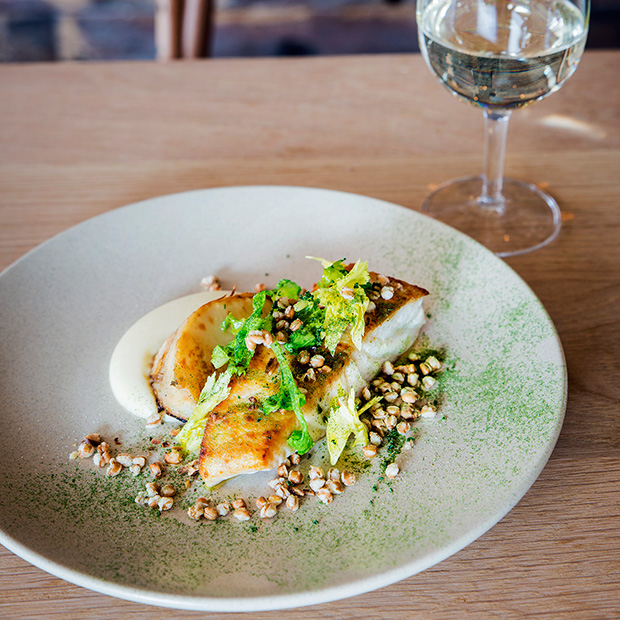 Drake-Eatery-Bondi-Pan-roast-blue-eye-cod-celeriac-walnuts-farro
