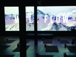 Supercharged and super cool: W1LL yoga arrives in Surry Hills